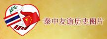 Banner index top 5 cn
